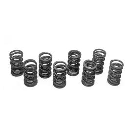 1731-1 Extra strong dual valve springs, 8 pieces